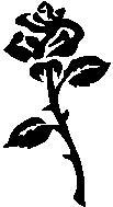 02. Virág