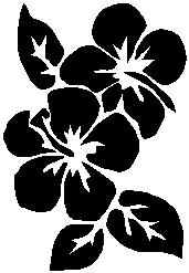 13. Virág