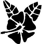 14. Virág