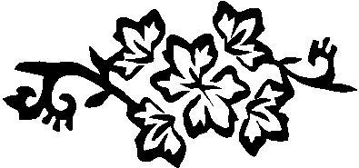 21. Virág