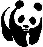 32. Panda