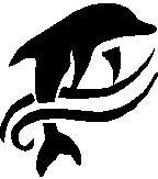 63. Delfin