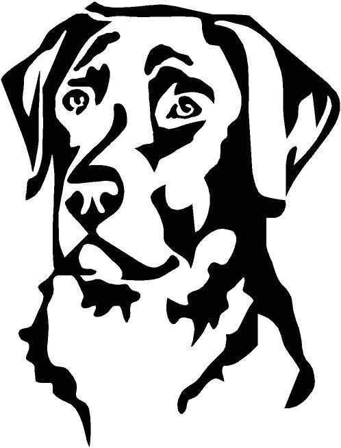 69. Kutya fej